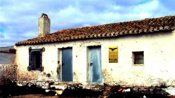 """Colonia de primillas, majada """"La Hoya de Linares"""""""