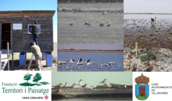 Proyecto de restauración de las lagunas de Villacañas